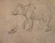 Leonardo-Da-Vinci-Animal-Rights