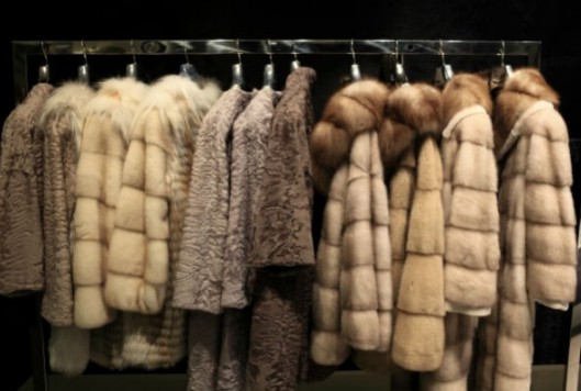 fur-coats-592x399
