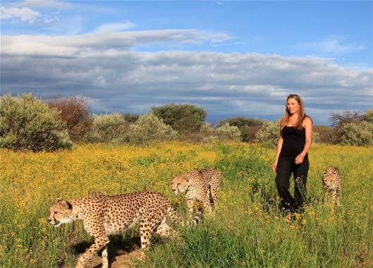 ©NAANKUSE Marlice Cheetah Walk