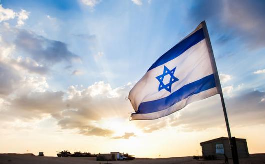 VegNews.IsraeliFlagFlying