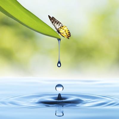 WaterUsePhoto.jpg